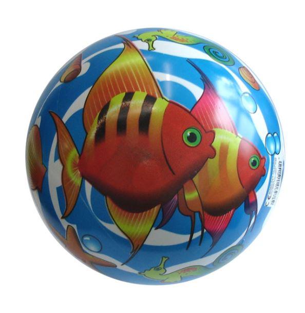 ACRA 06/278 Potištěný míč 220 mm - Rybičky